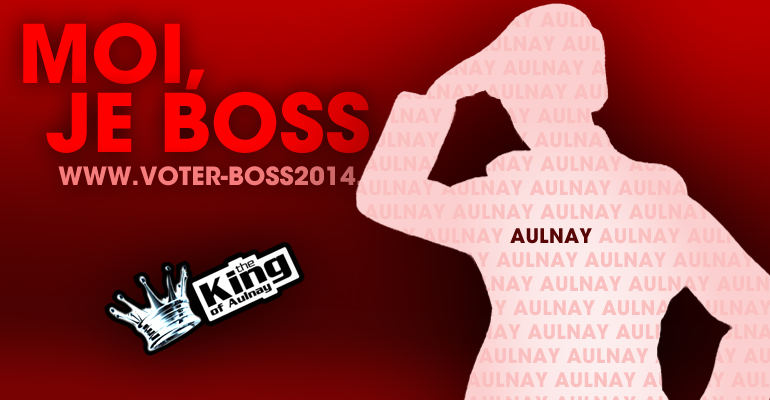 Les élections municipales à Aulnay-sous-Bois, un événement à suivre sur 93600INFOS ! | (C) 93600INFOS / Alexandre Conan