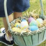 Chasse aux oeufs et fabrication de chocolat dimanche prochain au Parc du Sausset