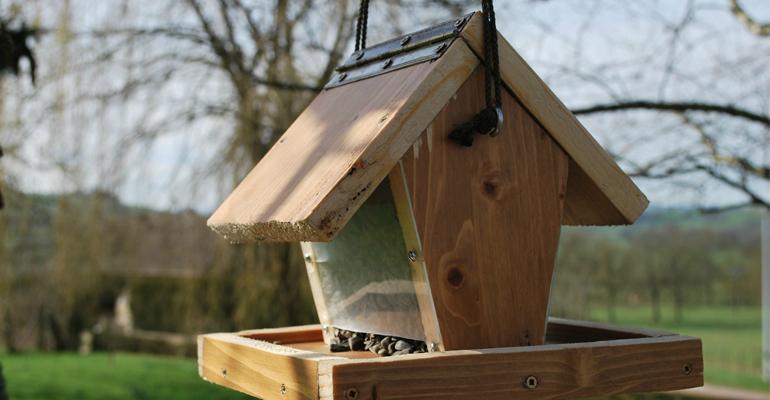 Concevez une mangeoire pour oiseaux avec l'équipe du parc du Sausset. | (C) B.Février