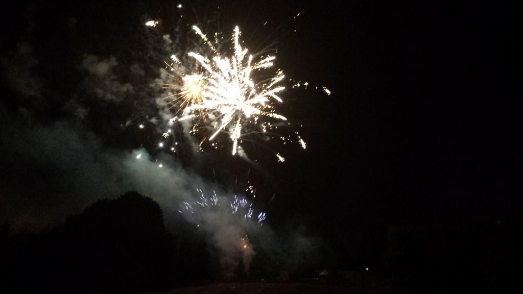 Le feu d'artifice du 14 Juillet 2015 a été suivi par plusieurs milliers de spectateurs ce mardi soir au parc Robert Ballanger, peu après 23h00. | (C) 93600INFOS / Alexandre Conan