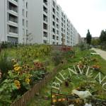Visite et atelier jardinage aux Jardins du Zephyr le 4 Août