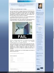 "Capture du blog ""Aulnay bleu marine"""