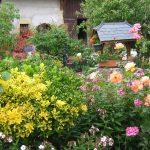 Derniers jours pour participer au concours des jardins et balcons fleuris