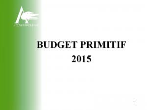 Budget primitif 2015 - aperçu